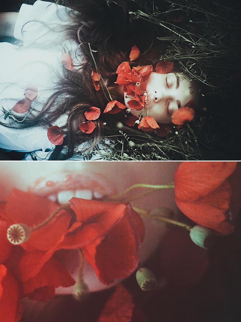 lucid dreams by laura-makabresku