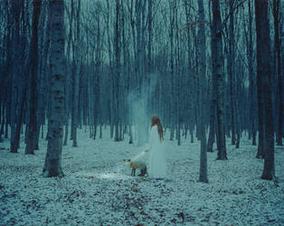 The Hidden by laura-makabresku