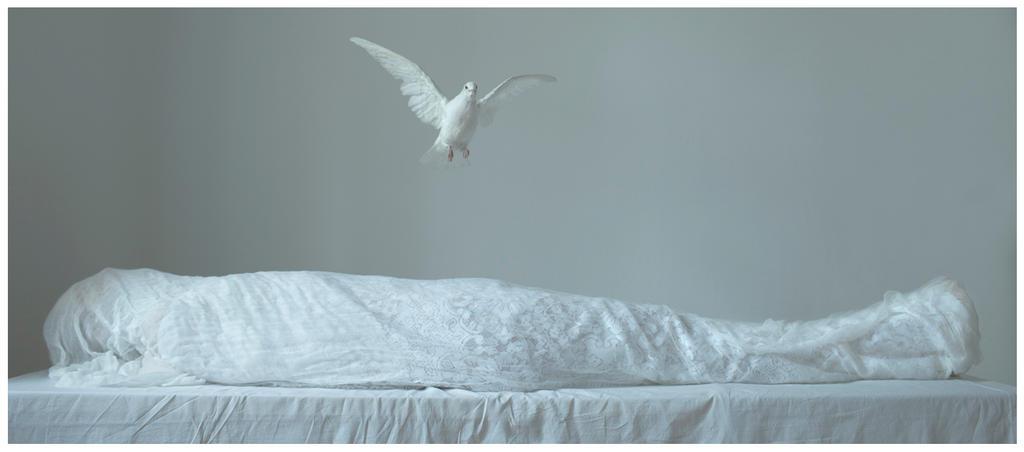 Silence by laura-makabresku