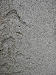 Cement wall 3