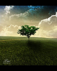 Tree by PacioR