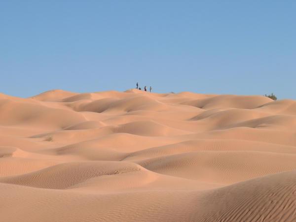 Desert 5 by B-SquaredStock