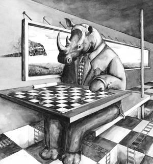 Rhino association