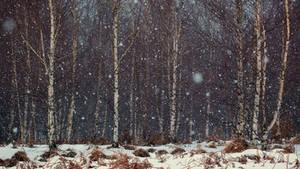 Snow 2 by mugurelm