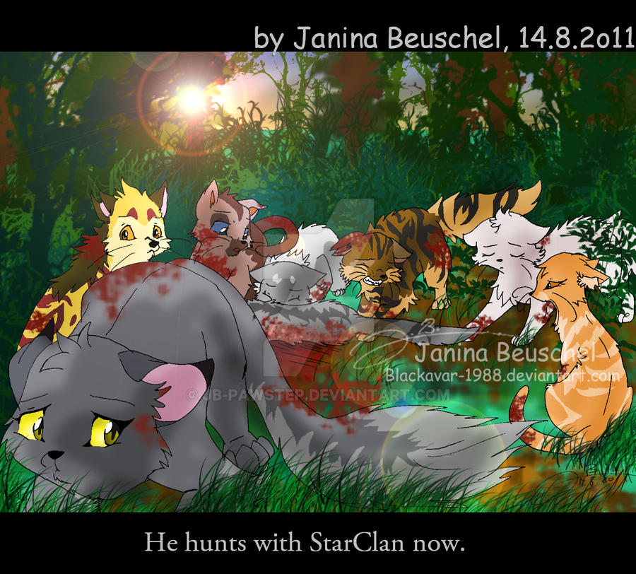 Book Trailer For Warriors Into The Wild: Rippletails Death By JB-Pawstep On DeviantArt