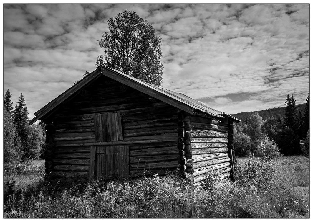Norway Vintage I by Darkkon