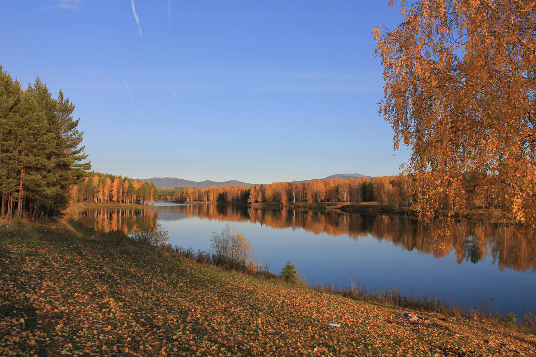 GOLD OF AUTUMN by Hudojnica
