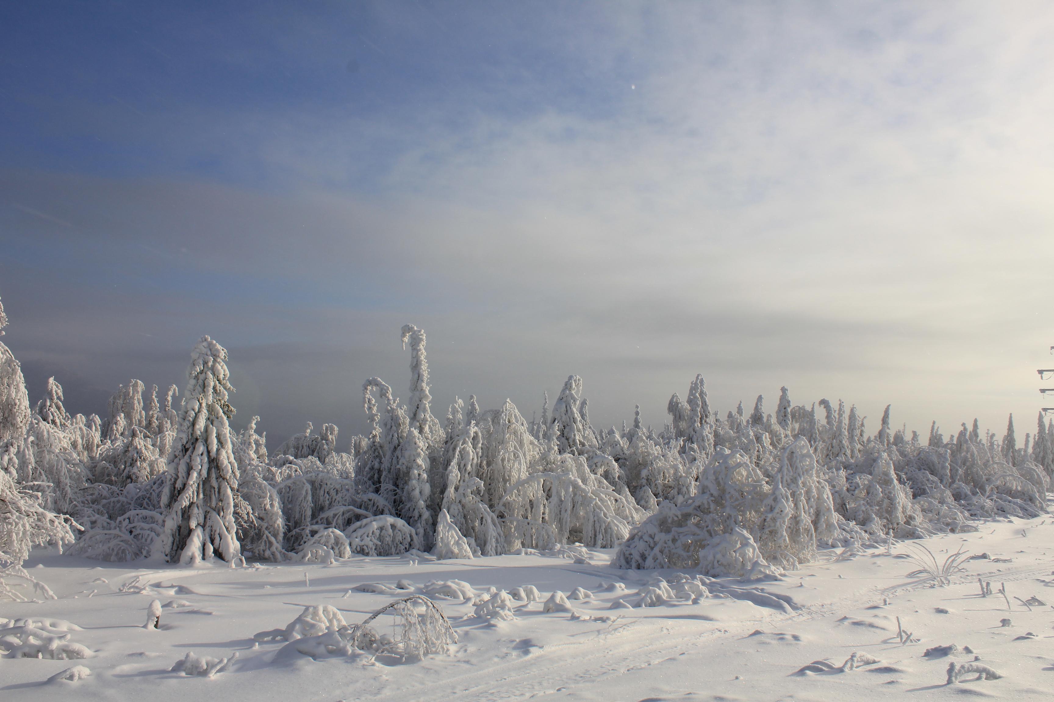 winter fantasmogoriya by Hudojnica