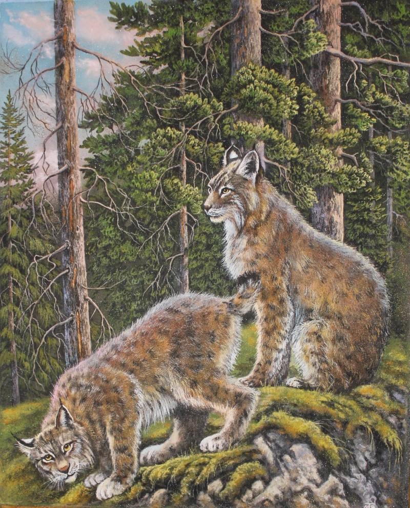 Lynxes by Hudojnica