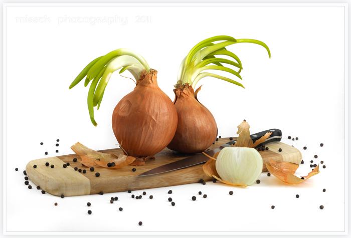 Onion heads by shatinn