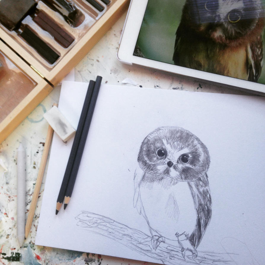 Charcoal owl (stil in process!)  by VliegendeFiets