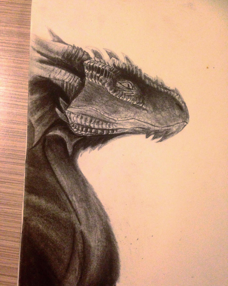 Charcoal Dragon (finished!)  by VliegendeFiets