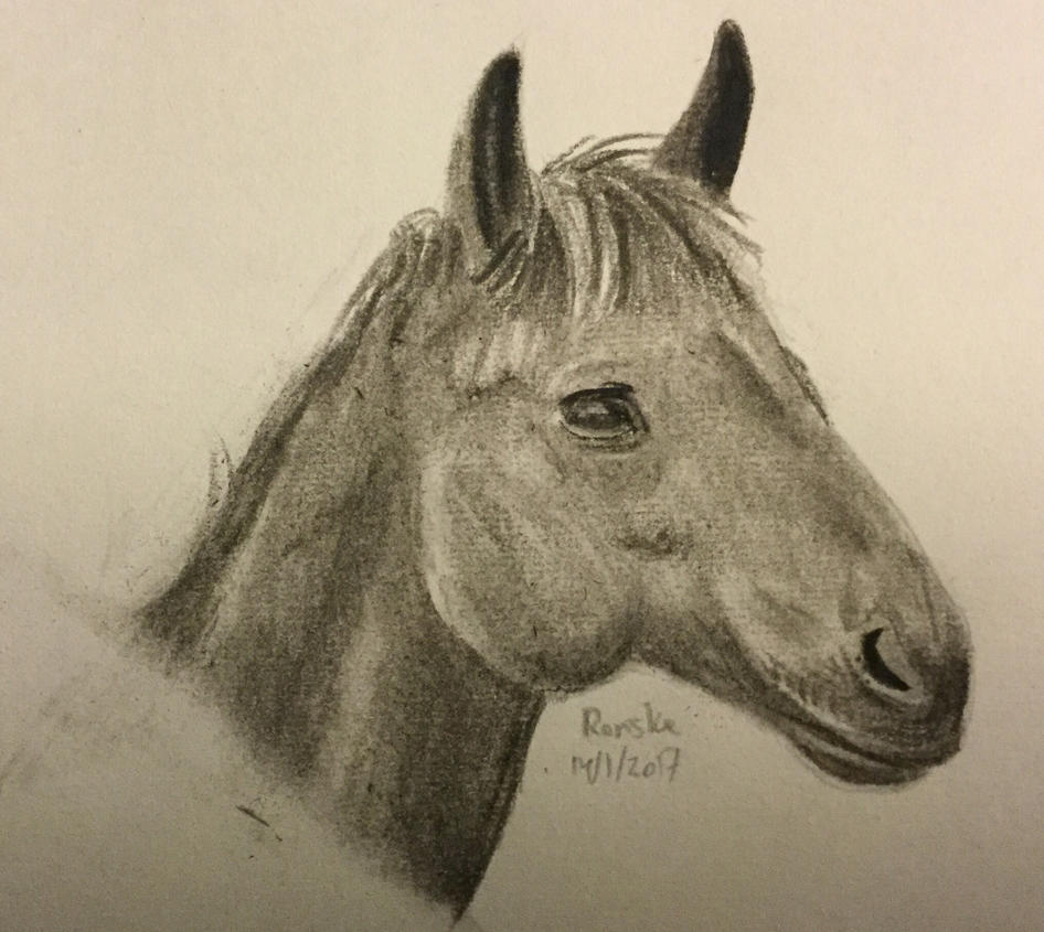 Horse ( charcoal ) by VliegendeFiets