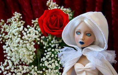 Love is a Christmas Rose by GossamerWing