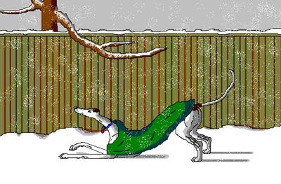 'Greyhound in the Snow' in MS Paint by Cecilia-Schmitt