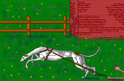 'The Power of the Greyhound Nose' in MS Paint. by Cecilia-Schmitt