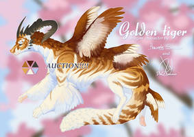 Golden Tiger Collab Dragon [OPEN] by PalDreamer