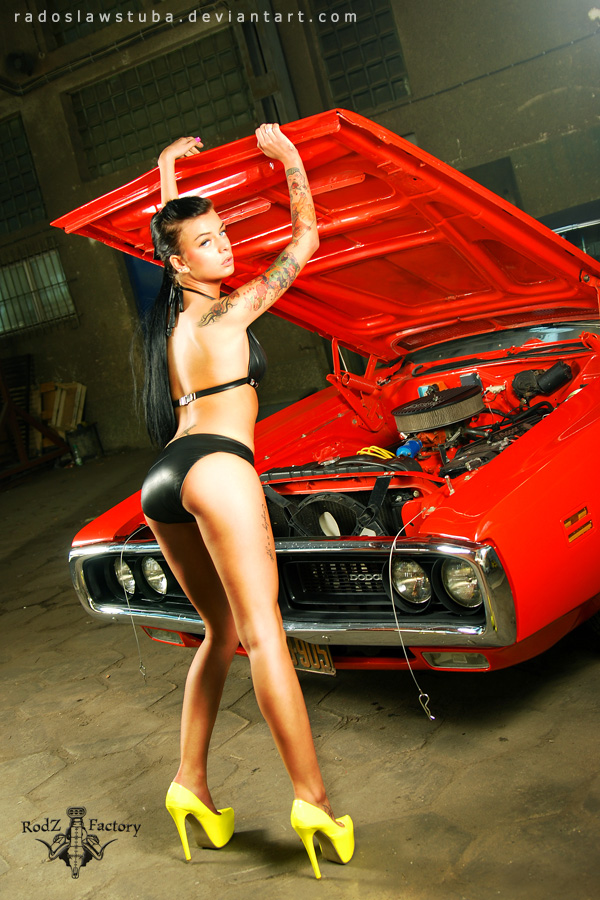 dodge charger and pysia by radoslawstuba