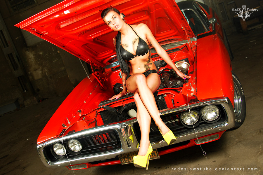 Dodge Charger and Pysia .5. by radoslawstuba