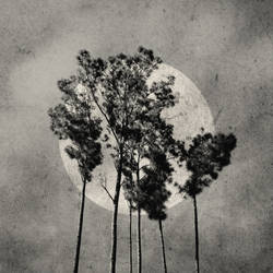 Ninety-Nine by NightlifeDweller