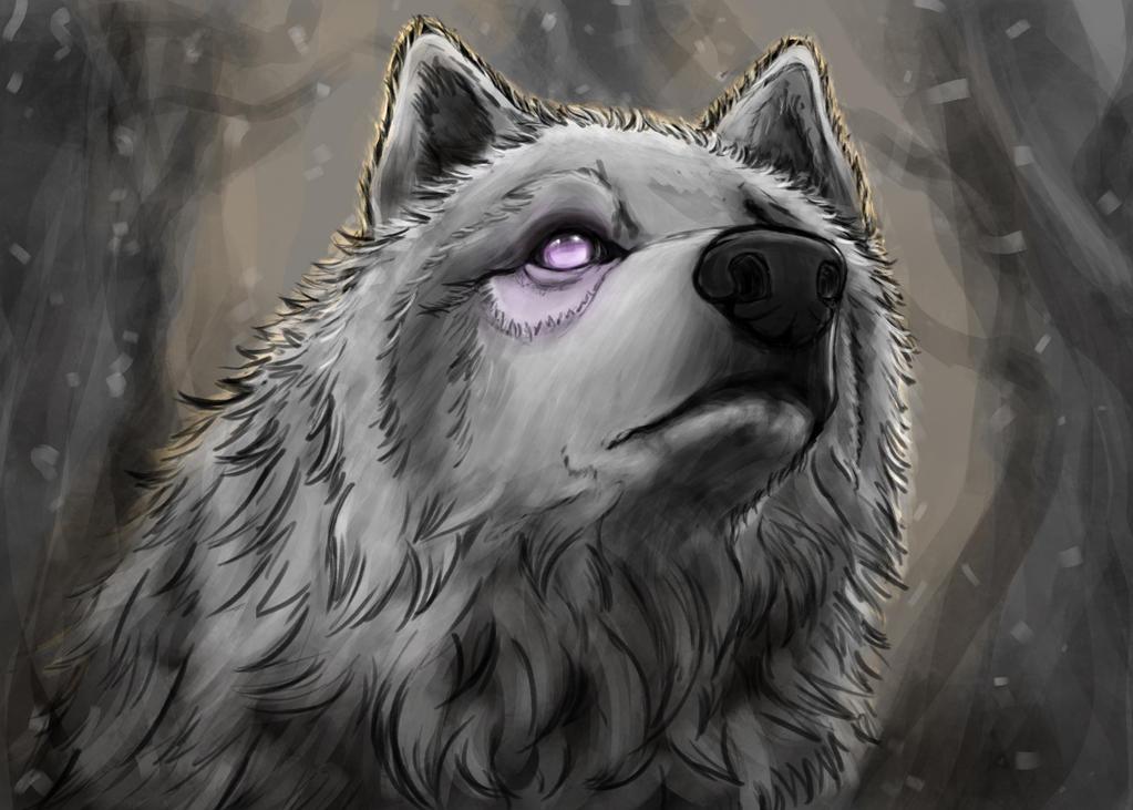 Wondering wolf by hyrelynk