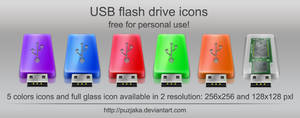 USB Flash drive icons by Puzjaka