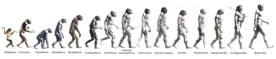El Homo Sapiens  by AmorYLuz