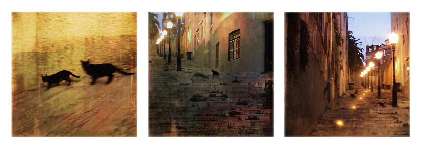 ombres furtives by rioMenor