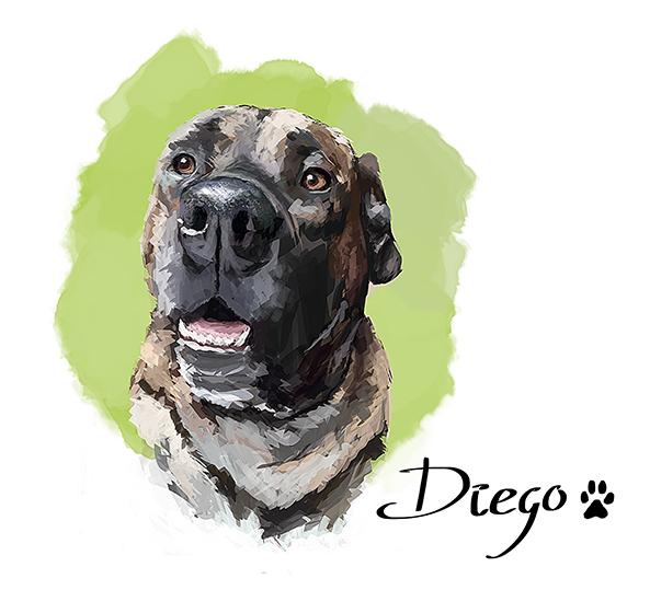 Diego3 merged small by Jonna84