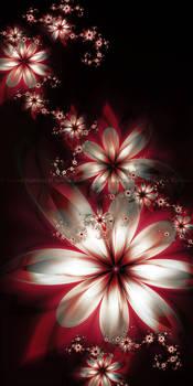 untitled fractals: 10