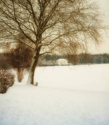 Winter Scenery No.2 by doomed-forever
