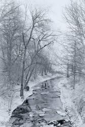 The Winter Stream II