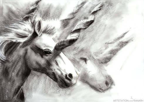 Unicorn Herd