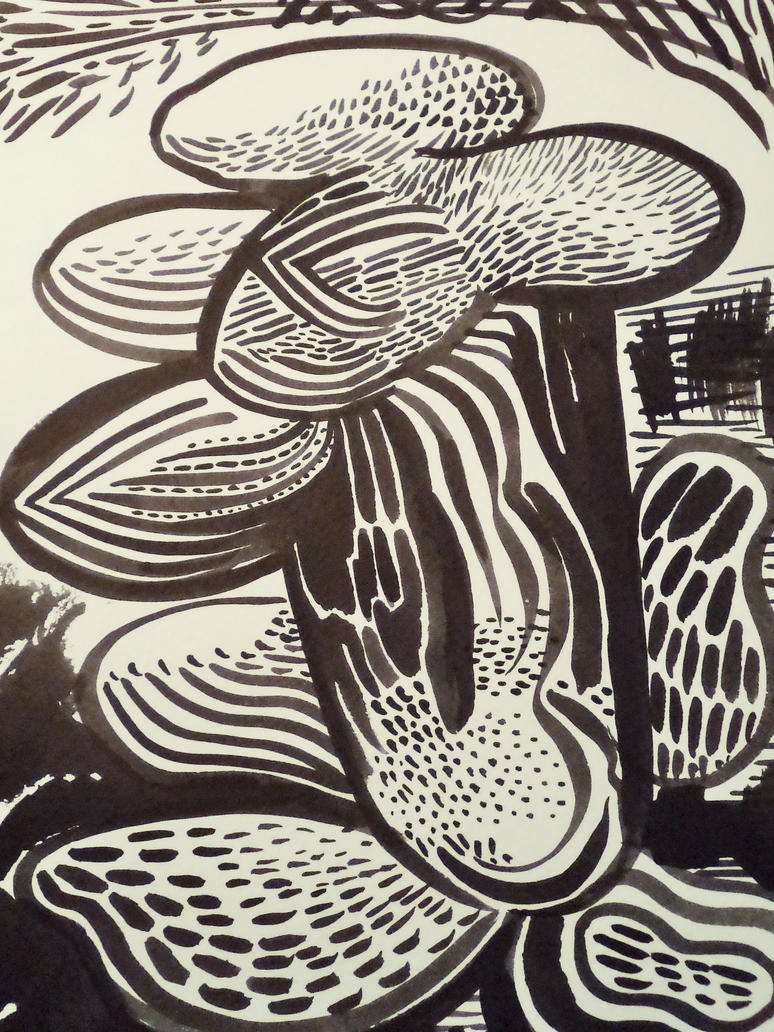 Cactus by jeremiahkauffman