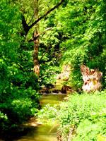 The Creek 4 by Aivaseda