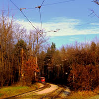 The Tram by Aivaseda