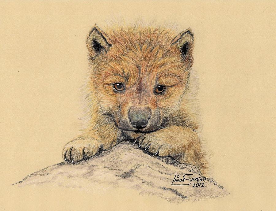 Fluffy... by Artsy50