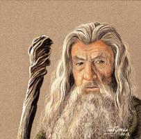 Gandalf the Grey by Artsy50
