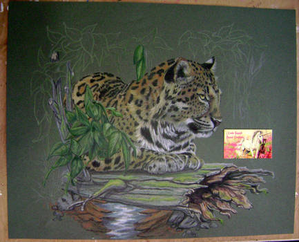 Leopard lounging on a log... WIP