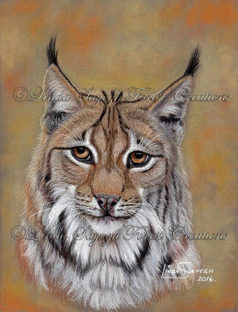 Lynx by Artsy50