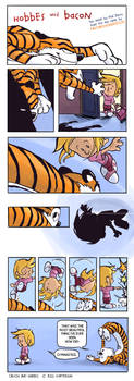 Hobbes and Bacon
