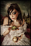 fairytail by Heile