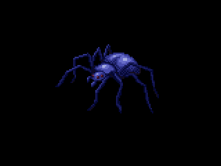 Spider by phanxgames