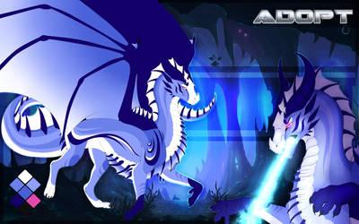 Dragon adopt open