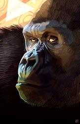 Gorilla by Prenzyy