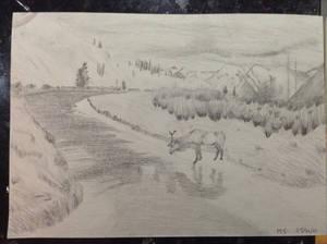 Elk landscape