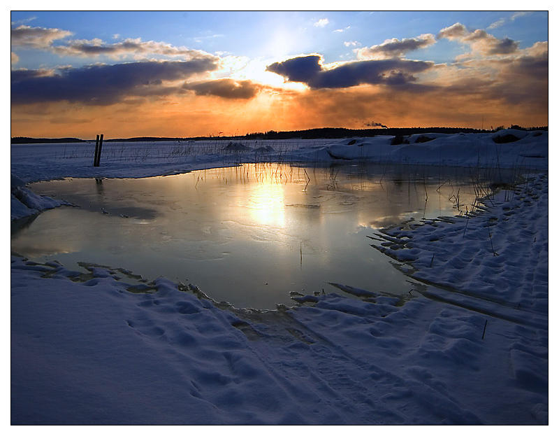 The Pond by Solkku