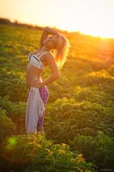 July Sun by platen