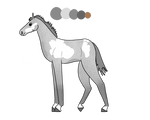 A1 Foal for HSB