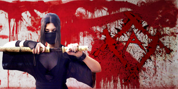 Assassin WIP by lotalara